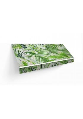 Amazonas reverso verde