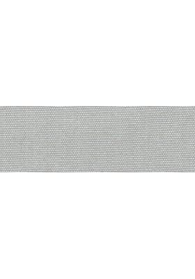 silver; 2821